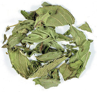 Suki Tea Whole Peppermint  505947